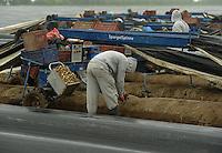 Wie beeinträchtigt der starke Regen Sachsens Obst- und Gemüsebauern - BILD fragte einmal nach - im Bild: Der Spargelhof Kyhna bei Delitzsch - auf dem Feld wir trotz des schalmmigen Grunds der Spargel planmäßig von polnischen Erntehelfern gestochen - Betriebsleiter Jürgen Kopf  sieht keine Ertragseinbuße für seinen Betrieb.  Foto: Norman Rembarz