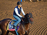 October 27, 2014:  Indianapolis, trained by Bob Baffert, exercises in preparation for the Breeders' Cup Xpressbet Sprint at Santa Anita Race Course in Arcadia, California on October 27, 2014. Scott Serio/ESW/CSM