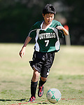 Arcadia Soccer 2013