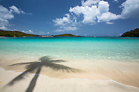 Gibney / Oppenheimer Beach<br /> Virgin Islands National Park<br /> St. John<br /> US Virgin Islands
