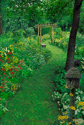 Grass path through arbor