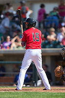 Leandro Santana (19) of the Billings Mustangs at bat against the Missoula Osprey at Dehler Park on August 20, 2017 in Billings, Montana.  The Osprey defeated the Mustangs 6-4.  (Brian Westerholt/Four Seam Images)
