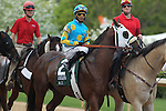 April 11, 2015: Mr. Z with jockey Ramon Vazquez aboard during post parade of the Arkansas Derby at Oaklawn Park in Hot Springs, AR. Justin Manning/ESW/CSM