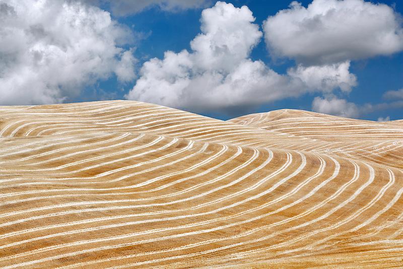 Harvested wheat field. The Palouse, Washington. A sky has been added.