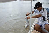 Xingu Indigenous Park, Mato Grosso State, Brazil. Boatman Ari Matipu with the catch of the day, a Barba Chata fish.