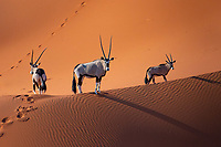 Namibia - Aerial Photography