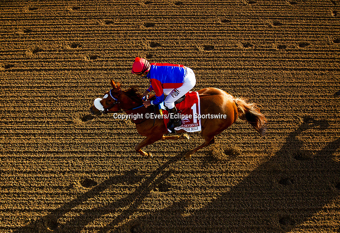 March 13, 2021: Swiss Skydiver and Robby Albarado win the Beholder Mile at Santa Anita Park in Arcadia, California on March 13, 2021. Evers/Eclipse Sportswire/CSM