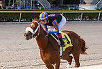 January 02, 2021:  #4 Drain the Clock, with jockey Edgard Zayas on board, wins the Limehouse Stakes at Gulfstream Park on January 2nd, 2021 in Hallandale Beach, Florida. Liz Lamont/Eclipse Sportswire/CSM