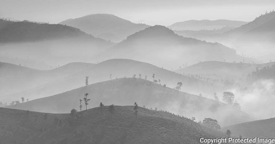 Thekkady mountains in the morning mist