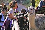Child & Llama