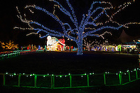 Austin Trail of Lights holiday exhibit returns with more than a mile of displays, entertainment, culinary delights, exciting theme nights and a new, non-profit village