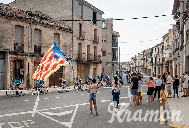 peloton with red jersey (overall leader) Miguel Angel Lopez (COL/Astana) passing under the Catalan flag<br /> <br /> Stage 8: Valls to Igualada (167km)<br /> La Vuelta 2019<br /> <br /> ©kramon