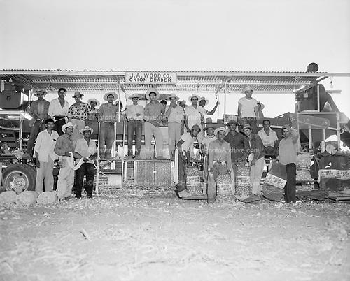 0301-732A Onion Harvest, J. A. Wood, onion grader, Tolleson, Arizona, 1950s