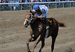 09 August 1: Jamie Theriot rides Dublin to a victory in the 6th race on Jim Dandy Stakes day at Saratoga Race Track in Saratoga Springs, New York.
