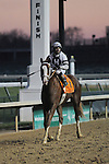 Will Take Charge and Luis Saez after winning the Clark Handicap at Churchill Downs, 11-29-13, for trainer D. Wayne Lukas and owner Willis Horton.
