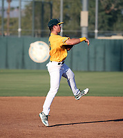 Matt McGarry - 2019 AZL Athletics (Bill Mitchell)