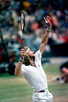 Bjorn Borg, Wimbledon 1981
