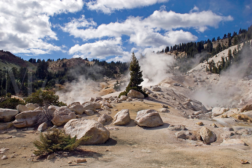 Geothermal activity creates steam at the hot sulfur pools  of BUMPASS HELL in LASSEN NATIONAL PARK -  CALIFORNIA