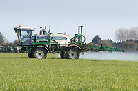 19-4-2021 Spraying fungicide on to Winter wheat at growth stage T0<br /> ©Tim Scrivener Photographer 07850 303986<br />      ....Covering Agriculture In The UK....