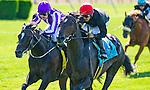 July 5, 2014: Mr. Speaker (red cap), ridden by Jose Lezcano, outduels Adelaide (purple cap), ridden by C. O'Donoghue, to win the Belmont Derby Invitational Stakes on Belmont Derby Day at Belmont Park in Elmont, New York. Scott Serio/ESW/CSM