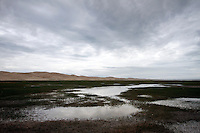 Qinghai Lake, China's largest inland body of water lies at over 3000m on the Qinghai-Tibetan Plateau. The lake has been shrinking in recent decades, as a result of increased water-usage for local agriculture. Qinghai Province. China. 2010
