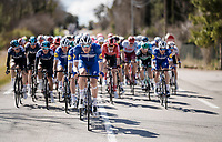 Tim DECLERCQ (BEL/Deceuninck-Quick Step) piloting the bunch<br /> <br /> Stage 6: Peynier to Brignoles (176km)<br /> 77th Paris - Nice 2019 (2.UWT)<br /> <br /> ©kramon
