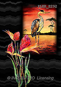 Kris, ETHNIC, paintings,+savanna, flowers++++,PLKKE292,#ethnic# Africa