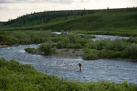 150620-JRE-7981E-0224 Fly Fishing an interior Alaska stream for Arctic Grayling.