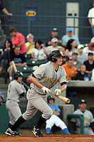 Eddie Prash  of the Lynchburg Hillcats at bat in a game against the Myrtle Beach Pelicans on April 28, 2009