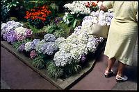 Wintergarden, Auckland 1988