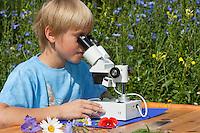 Kind, Junge, Kinder mit Binokular im Garten, Stereolupe, Lupe, betrachtet eine Hummel