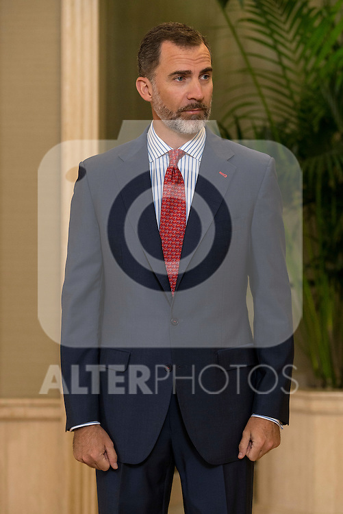 King Felipe VI of Spain during a royal audience with the board of the Carolina Fundation at Zarzuela Palace in Madrid, Spain. June 17, 2015.<br />  (ALTERPHOTOS/BorjaB.Hojas)