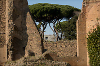 """FAO Headquarters (The Food and Agriculture Organization (FAO) is an agency of the United Nations).<br /> <br /> Rome, 03/03/2019. Visiting and documenting le Terme Di Caracalla (the Bath Of Caracalla, Thermae Antonianae). «[…] The Thermae Antonianae, one of the largest and best preserved examples of an ancient spa complex, was constructed under the auspices of the Emperor Caracalla in the southern part of the city. The building was finished in 216 A.D. and exhibits the rectangular plan typical of Imperial spa centres. The spa itself was not simply a place for bathing, sport and health, it was also a place of study and for relaxing. […] Around the centre of the structure the various parts of the spa are found in sequential order: the """"Calidarium"""", the """"Tepidarium"""", the """"Frigidarium"""" and the """"Natatio"""". There are also other zones and areas to be found around the two gymnasiums. […] Written manuscripts refer to enormous marble columns, flooring made of coloured marble, mosaics of glass and marble on the walls, painted stuccos and hundreds of statues located in niches and placed centrally in the rooms themselves. The water system was made possible by the construction of a special duct from the main aqueduct called the Aqua Antoniana […]» (1.).<br /> This visit was possible thanks to the company of Artist and Curator, Flavio Marzadro and the Italian State initiative: """"Domeniche al Museo"""" (Sunday at the Museum, 2.).<br /> <br /> Footnotes & Links:<br /> 1. (Source, Coopculture.it ENG & ITA) https://www.coopculture.it/en/heritage.cfm?id=6 & https://www.coopculture.it/heritage.cfm?id=6<br /> 2. http://musei.beniculturali.it/en/eventi/domenicalmuseo<br /> (Source, Britannica.com, ENG) https://www.britannica.com/topic/Baths-of-Caracalla<br /> (Source, Wikipedia.org, ENG & ITA) https://en.wikipedia.org/wiki/Baths_of_Caracalla & https://it.wikipedia.org/wiki/Terme_di_Caracalla"""