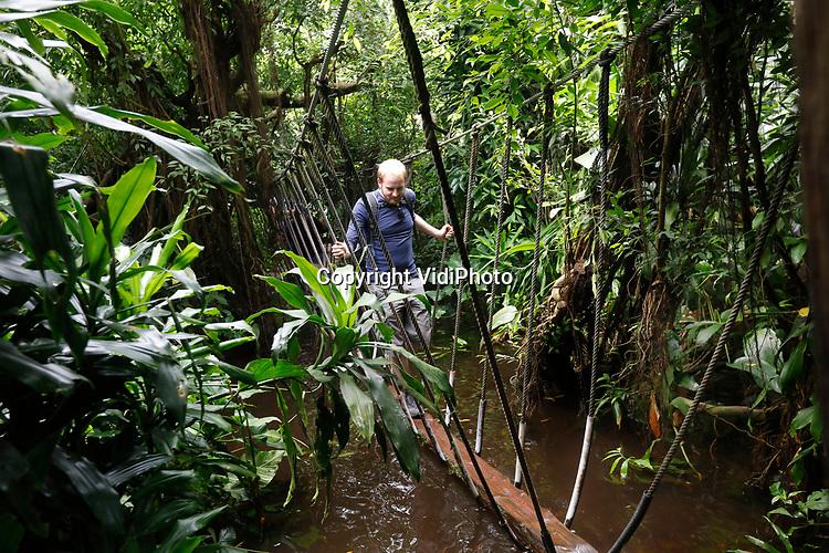 """Foto: VidiPhoto<br /> <br /> ARNHEM - Het overdekte oerwoud Burgers' Bush in Arnhem is in relatief korte tijd veranderd van een hal met jonge planten, in een complex en verfijnd ecosysteem, waarin planten en dieren afhankelijk van elkaar zijn. """"In alles moesten we pionieren"""", vertelt plantenverzorger Tom van den Hurk. Sinds enkele jaren is hij verantwoordelijk voor de botanische verzameling van de Bush. Wetenschappers en studenten bezoeken regelmatig de Bush en ontdekken daar nog niet eerder beschreven planten en paddestoelen."""