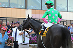 September 07, 2015.  Pure Sensation (#4), Kendrick Carmouche up, wins the Grade III Turf Monster Handicap Stakes, five furlongs, for three-year-olds and upward, at  Parx Racing in Bensalem, PA. Trainer is Christophe Clement; owner is Patricia Generazio. (Joan Fairman Kanes/ESW/CSM)