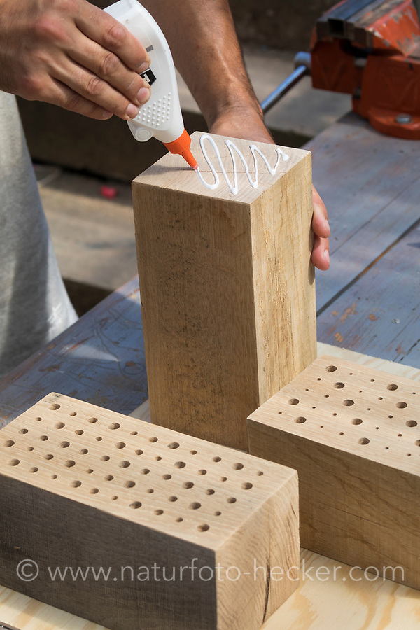 """Wildbienen-Nisthilfe Modell """"Blockhütte"""". Die Blöcke aus Hartholu, Holz werden miteinander verleimt und mit Schraubzwingen fixiert. Besteht aus Hartholzblöcken mit unterschiedlichen Bohrungen, Schilfstängeln, Natur-Strohhalmen und Pappröhrchen, Wildbienen-Nisthilfen, Wildbienen-Nisthilfe selbermachen, selber machen, Wildbienenhotel, Insektenhotel, Wildbienen-Hotel, Insekten-Hotel"""