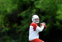 May 20, 2009; Tempe, AZ, USA; Arizona Cardinals quarterback Matt Leinart drops back to pass during organized team activities at the Cardinals practice facility. Mandatory Credit: Mark J. Rebilas-