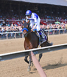 Drefong (no.10), ridden by Mike Smith and trained by Bob Baffert, wins the 37th running of the grade 1 Forego Stakes for three year olds and upward on August 26, 2017 at Saratoga Race Course in Saratoga Springs, New York. (Bob Mayberger/Eclipse Sportswire)