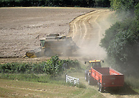Agriculture 2005