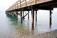 Under pier at Kayak Point County Park, Snohomish County, Washington, USA