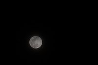 Behind a thin veil of wispy clouds floats the second full moon of March 2018, the blue moon.  To Native Americans, the March full moon was known as the Worm as well as the full sap moon.