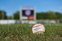 A Minor League baseball rests in the outfield before a Pioneer League game against the Grand Junction Rockies at Dehler Park on August 15, 2019 in Billings, Montana. Billings defeated Grand Junction 11-2. (Zachary Lucy/Four Seam Images)