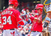 21 June 2015: Washington Nationals outfielder Bryce Harper comes home to score after hitting a two-run homer to open the scoring in the first inning against the Pittsburgh Pirates at Nationals Park in Washington, DC. The Nationals defeated the Pirates 9-2 to sweep their 3-game weekend series, and improve their record to 37-33. Mandatory Credit: Ed Wolfstein Photo *** RAW (NEF) Image File Available ***