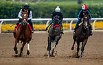 October 23, 2021: Hot Rod Charlie (Red Shadow Roll) works in preparation for the Breeders' Cup Classic at Santa Anita Park in Arcadia, California on October 23, 2021. Evers/Eclipse Sportswire/CSM