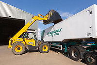10-8-2021 Loading a grain lorry with wheat <br /> ©Tim Scrivener Photographer 07850 303986<br />      ....Covering Agriculture In The UK....