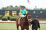 HOT SPRINGS, AR - JANUARY 15: Jockey Gary Stevens aboard Sassy Sienna #7 after winning the 7th race at Oaklawn Park on January 15, 2018 in Hot Springs, Arkansas. (Photo by Justin Manning/Eclipse Sportswire/Getty Images)