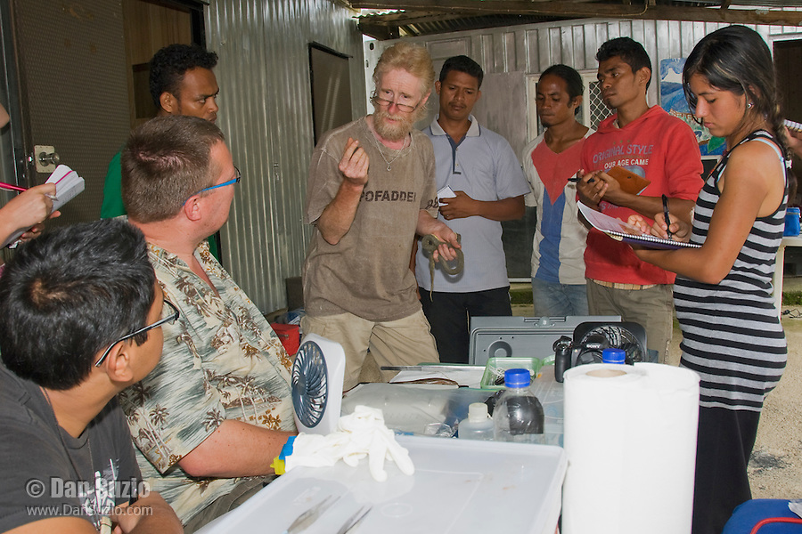 British herpetologist Mark O'Shea, holding a dog-faced water snake, Cerberus rynchops, speaks to American and Timorese students at their makeshift research station at Bakhita Mission, Near Eraulo, Ermera District, Timor-Leste (East Timor). Left to right: Jester Ceballos, Professor Hinrich Kaiser, Luis Lemos, Mark O'Shea, Benny Carvalho, Laca Ribeiro, Zito Afranio, Marianna Tucci, Eric Leatham.