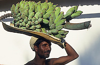INDIA Karnataka, farm near Mangalore, farmer with harvested banana / INDIEN, Farm bei Mangalore, Bauer mit geernteten Bananen