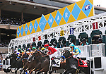 July 20, 2011.Horses leave the gate for the first race on opening day at Del Mar Thoroughbred Club, Del Mar CA.