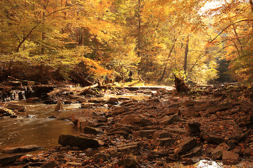 Autumn morning at McCormick's Creek State Park.